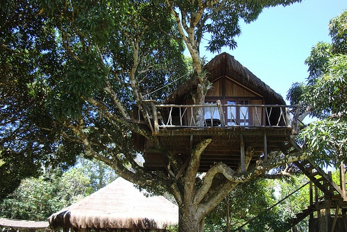 Artjungle Eco Lodge in Itacare, Bahia, Brazil
