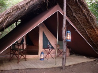 selous river camp